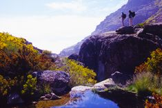 This is a privileged and unique territory in the middle of the Serra da Estrela Natural Park.