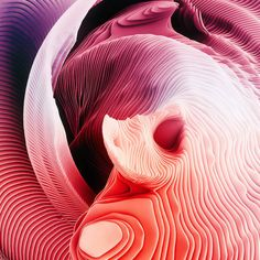 Visual Experiments in Color and Repetition – Fubiz Media