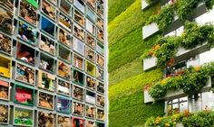 The B&Q vertical garden is prepared for the 2011 Chelsea Flower Show. Photograph: Linda Nylind for the Guardian