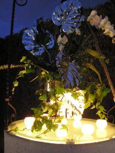 pozo decorado en una finca  en mitad de la albufera valenciana