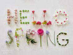 Flowers bloomin'
