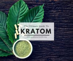 Ultimate Guide To Kratom Powder (Effects, Dosage, and More) - Issuu Red Vein Kratom, Opiate Withdrawal, Mitragyna Speciosa, Exercise For Six Pack, Mood Enhancers