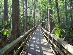 Best Scenic Walking Trails Around Delray Beach | digital media arts college | www.dmac.edu | 561.391.1148