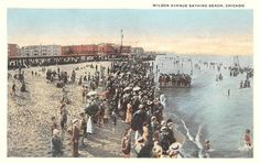 POSTCARD - CHICAGO - WILSON AVE BATHING BEACH - LARGE CROWD AT WATER - PEOPLE SITTING UNDER STRUCTURE BEHIND - TINTED - c1920