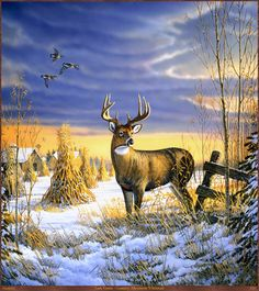 Sam Timm Original | Panthera_0321_Sam_Timm_Country_Afternoon_Whitetail; DISPLAY FULL IMAGE ...