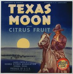 TEXAS MOON Vintage Texas Citrus Crate Label