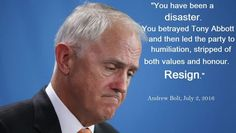 LIVE POLL : Should Malcolm Turnbull Resign? Tony Abbott, Vote Now, Betrayal, Live, Memes, Meme