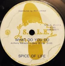 WHAT DO YOU DO / PLACES AND FACES | SPICE OF LIFE | 7 inch single | $25.00 AUD | music4collectors.com