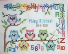 Hoot Owls Alphabet Baby Sampler Completed