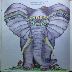 ANIMORPHIA 2 (no filter) with the Inktense pencils.  #elephant #elefante #art #artoftheday #animorphia #adultcoloring #adultcoloringbook #book #boracolorirtop #beautifulcoloring #color #colorido #coloring #colorirlove #coloringbook #desenho #drawing #inktense #inktensepencils #kerbyrosanes #livrodecolorir #majesticcoloring #zentangle #doodle