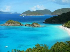 Snorkeled Trunk Bay, St.John, Virgin Islands