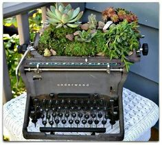 Surprising Items You Can Repurpose into Succulent Planters - Digging In The Garden