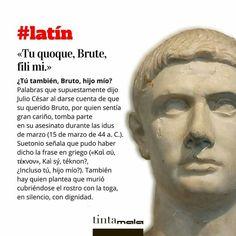 Latin Quotes, Latin Phrases, Latin Words, Locuciones Latinas, Vox Populi, Latin Language, Rare Words, Learning Spanish, Writing Tips