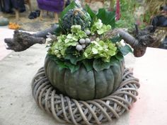 Great idea, use wreath form as a base Fall Pumpkin Crafts, Autumn Crafts, Fall Pumpkins, Real Flowers, Pretty Flowers, Seasonal Decor, Fall Decor, Winter Plants, Fall Arrangements