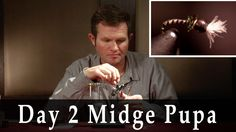 Boots Allen of Snake River Anglers in Jackson Hole, WY ties up his Day 2 Midge Pupa.  Boots is an author and 2nd generation guide in the Jackson and Driggs, ID area.
