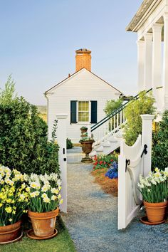 Grow Daffodils in Containers | Enjoy nonstop color all season long with these container gardening ideas and plant suggestions. You'll find beautiful pots to adorn porches and patios. You may not have the space or patience to become a master gardener, but anyone can master container gardening. It's a cinch—all you need is a container (a planter in true gardener speak), potting soil, some plants and you're ready to go. Thinking of container gardening like this, it's easy to see why container