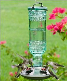 Watching - and hearing - hummingbirds at a feeder. Even better when it's YOUR feeder, right outside YOUR door!