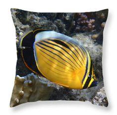 Exquisite Butterlfyfish Tyyny Twitter Pillow case by @JonnaHurmerinta  (scheduled via http://www.tailwindapp.com?utm_source=pinterest&utm_medium=twpin&utm_content=post12616226&utm_campaign=scheduler_attribution)