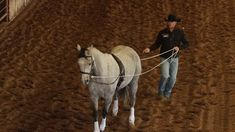 It is so easy to get stuck in a rut when working with horses. Reining Horses, Dressage, Horse Riding Tips, Riding Gear, Horse Exercises, Horse Training, Training Tips, Horse Quotes, Clothes Horse