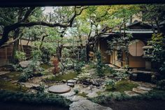 In.学社 | 予见东方の日本设计大师课预售 Japanese Water Feature, Tokyo Restaurant, Private Viewing, Japanese Interior, Local Attractions, Hotel S, Japanese Culture, Japan Travel, Water Features