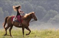 If u have ever been on a horse than u know what im talking about u know whats its like to slip away from the world and just ride, to feel the excitment running through ur veins, to feel the wind pushing against ur hair, to feel that joy and satisfaction, and to know the love a horse can give u.