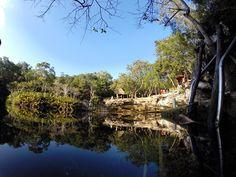 Cenote el Eden- Ponderosa