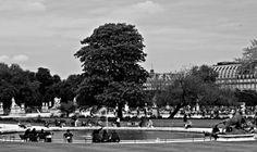 #beautiful  #beauty  #landscape #reflection  #bestoftoday #clouds #sky  #amazing #pretty #gorgeous #fun #view #landscapes #photooftheday #scenery #travel #europe #berlin #love #paris  #bw #blackandwhitephotography #blackandwhite #photography
