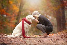 Download wallpaper friends, dog, girl, joy, meeting, dog resolution 2048x1365