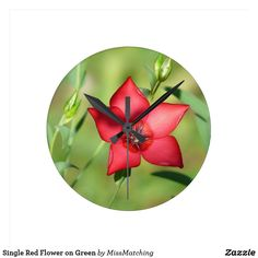 Single Red Flower on Green Round Clock