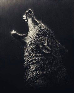 How to draw a wolf howling spirit animal 24 ideas for 2019 Wolf Tattoo Design, Tattoo Designs, Wolf Tattoos, Art Scratchboard, Fenrir Tattoo, Angry Wolf, Wolf Painting, Wolf Wallpaper, Wolf Howling