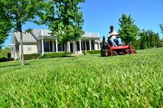 lawn care service, landscaping companies, garden service, scotts lawn care, lawn doctor, lawn mowing service, garden landscaping, lawn feed, scotts lawn