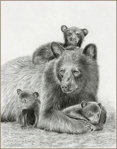 Pencil drawings of bears black bear pencil drawings for Bear cub tattoo