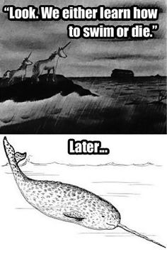 Actually the myth about the unicorn was started when they discovered the Narwhale. O.o