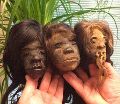Authentic Shrunken Heads. Tsantsa, Jivaro, Shuar, Shrunken Head Book.