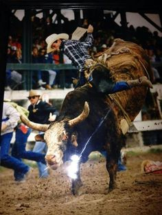 "A great shot of Lane Frost's last ride on ""Taking Care of Business"" in Cheyenne 1989. What a chillingly ironic name for that bull."