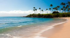 Maybe you want a quieter, more relaxing vacation (not that you can't relax in Kaanapali)- check out Kapalua. It is a much less busy place to stay.