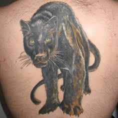 Panther Tattoo Meanings   iTattooDesigns.com