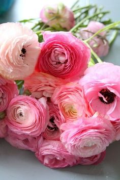 Gotta have some ranunculus in my bouquet & flower arrangements My Flower, Fresh Flowers, Pretty In Pink, Pink Flowers, Beautiful Flowers, Ranunculus Flowers, Pink Peonies, Peony, Pink Roses