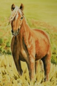 'Welsh Pony' watercolour