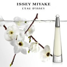 Issey Miyake L'Eau d'Issey fragrence awakens a feeling of total beauty of lady. A pure floral with musky and woody tones. A very complex fragrance, the perfume is made up of a wide range of floral scents including lotus, cyclamen, freesia, carnations, and white lilies, with hints of amberseed and musk. Click to buy http://www.chicworldonline.com/product?name=Issey-Miyake-EDP&pid=219&c=99