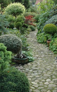 Stone walkway is great, but I love the texture of the plantings