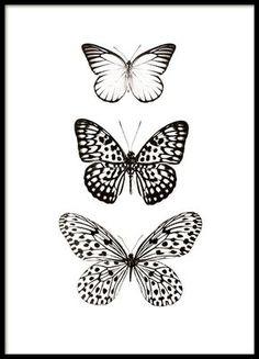 Kannst du die Schmetterlinge noch fühlen?
