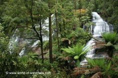 Triplet Falls  Great Otway National Park, Victoria, Australia