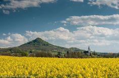 Általában áprilisban kezdődik a repcevirágzása Magyarországon, amiönmagában is szép, de a Káli-medencével együtt még páratlanabb látványt nyújt. A Káli-medencea Balaton-felvidéki Nemzeti Park része, Zánkánál kezdődik és Balatonrendes illetve Ábrahámhegy közelében az Örsi-hegy határolja. Erről a gyönyörűen virágzó balatoni tájrólBercsi Gábor fotográfuskészített csodálatos képeket még április első felében. Csobánc repce szőnyegen (Fotó: Bercsi Gábor) Hanami - [...]