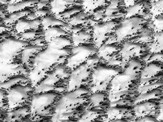 """HiRISE @HiRISE  """"We live, not as we wish to, but as we can.""""  — Menander, 342–c.292 BCE"""