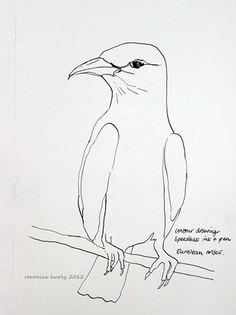 Bird contour drawing