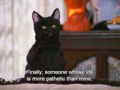 I love Salem, he's perfect