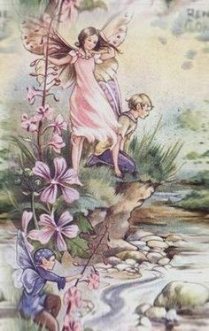Rene Cloke Artwork Postcard Elfins of the Brook, Butterfly Fairy Water Fairy, Kobold, Cicely Mary Barker, Fairy Pictures, Butterfly Fairy, Vintage Fairies, Beautiful Fairies, Flower Fairies, Fairy Art