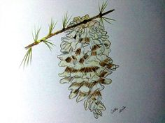 Pining Away by cathib9 on Etsy, $25.00