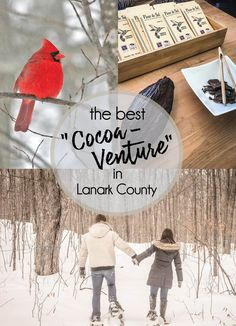 The perfect 'cocoaventure' is in store for you. Ok, the word cocoaventure may be made up, but it perfectly combines the idea of rich chocolate with the natural paradise of Lanark County! Swiss Chocolate, Belgian Chocolate, Chocolate Shavings, Chocolate Treats, Love Chocolate, How To Make Chocolate, Cross County, Outdoor Skating, Best Beans